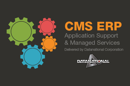 CMS ERP solutions and services